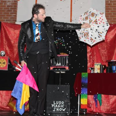 Ludo Magic Show